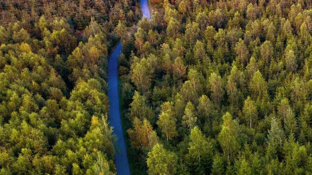 Luftaufnahme vom Sauerland aufgenommen von Wurzelwerk mit DJI Drohne